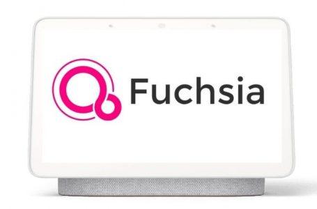 Fuchsia reemplazaría a Android como el sistema operativo móvil de Google